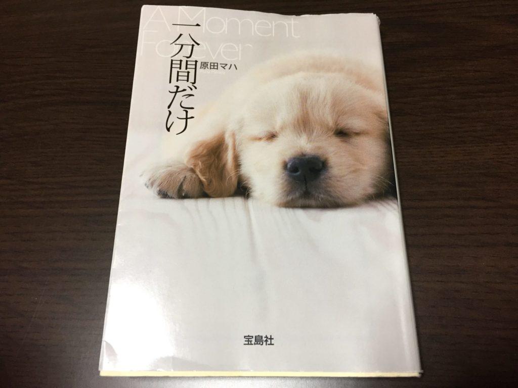 原田マハさんの「一分間だけ」を読んで、涙があふれました