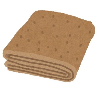 ニトリのNウォームシリーズ。毛布もやっぱり温かいらしい
