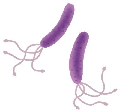 健康診断でピロリ菌が見つかった!なんか、嫌な感じです
