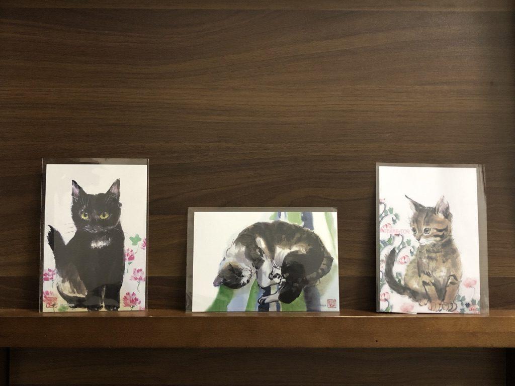 猫 ポストカード